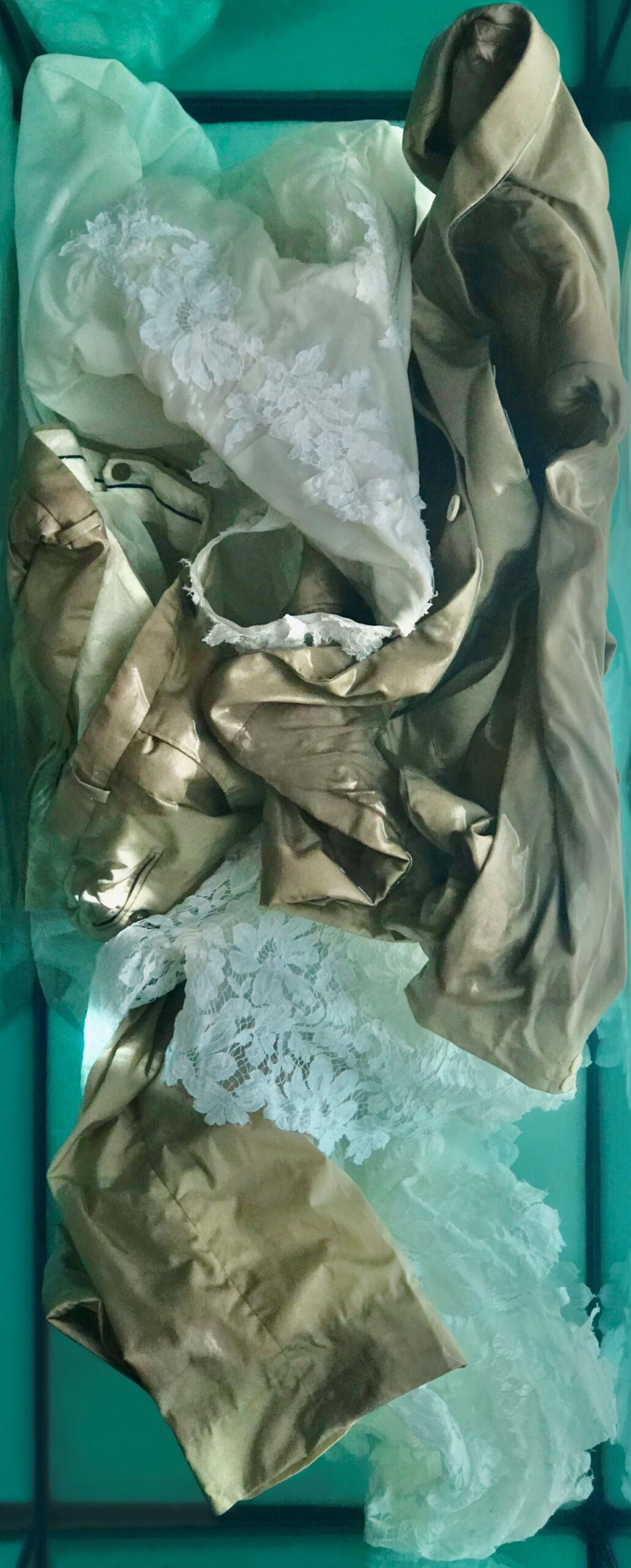 Mutazioni08 2020 stampa Fine Art 66 x 27 cm